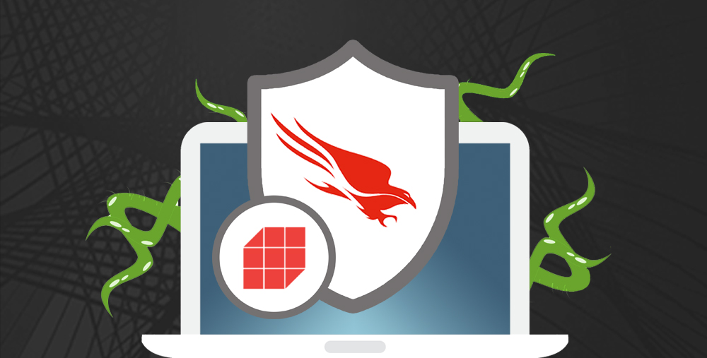 How LaSalle and CrowdStrike Help Protect Your IT Assets from Harm